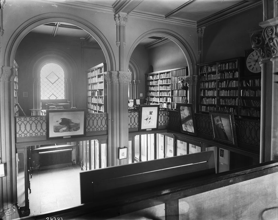 Black and white photo of a fanciful library