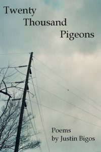 Book cover with a photo of telephone wires against a cloudy blue sky
